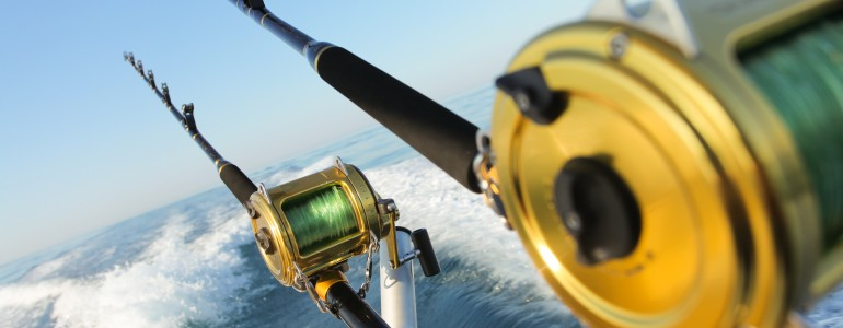 St. Petersburg Offshore Deep Sea Fishing