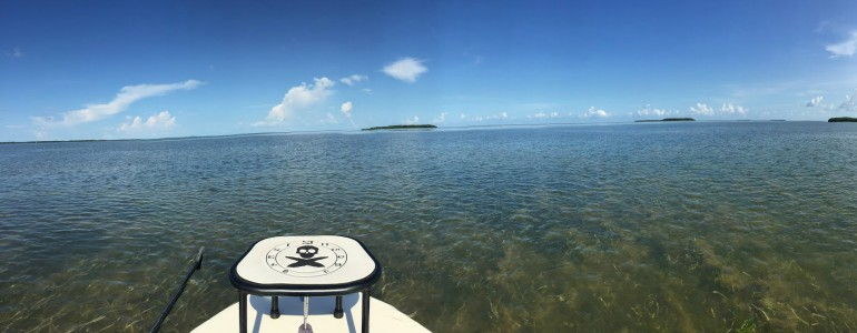 Back Country Fishing in Key Largo, FL