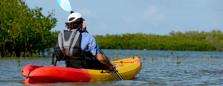 Lemon Bay Kayak Tour in Englewood, FL