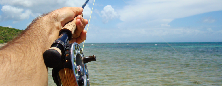 St. Pete Saltwater Fly Fishing