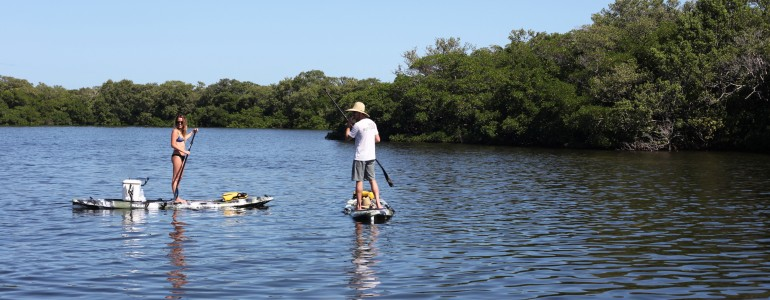 Paddle Tour – Sunset Beach in Tarpon Springs, FL