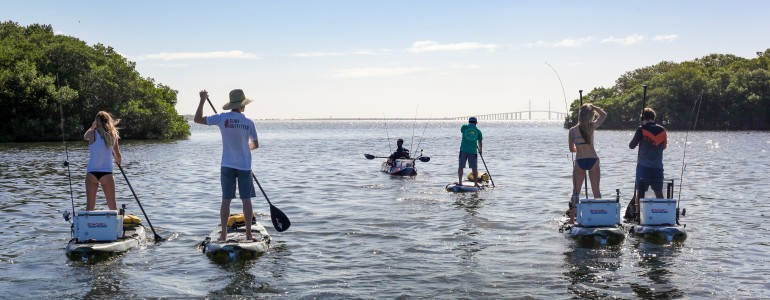 Lemon Bay Paddle Tour in Englewood, FL