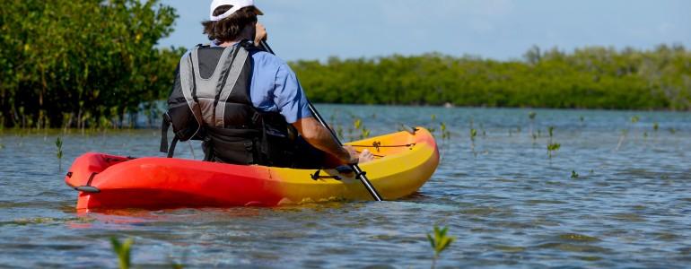 Local Kayak Tour in Tallahassee, FL